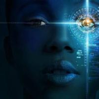 研究人员收集混乱的图像来揭示人工智能视觉的弱点